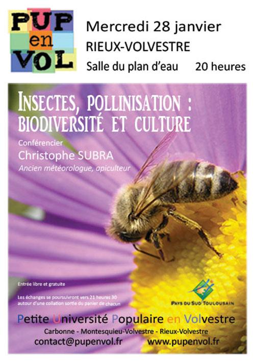 Insectes et pollinisation : biodiversité et culture